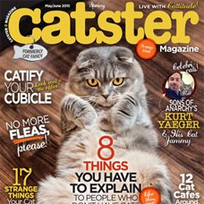 Cat Ball as seen in Catster Magazine