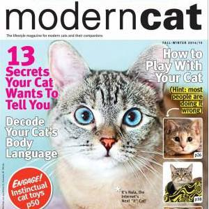 Cat Ball as seen in Modern Cat Magazine